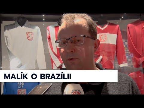 Martin Malík o utkání s Brazílií