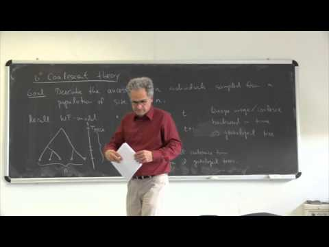 J. Krug. Statistical Physics of Biological Evolution 4