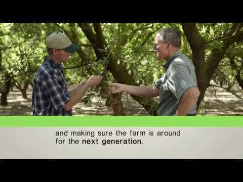 Sustainability and Almond Farming - Almond Board of California