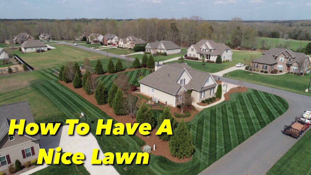 5 Steps To A Nice Lawn You