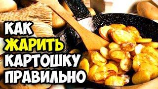 Сколько стоит картошка в Москве. Как правильно жарить картошку в домашних условиях пошаговый рецепт