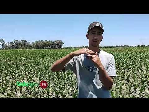 Una sembradora con la última tecnología de PrecisionPlanting