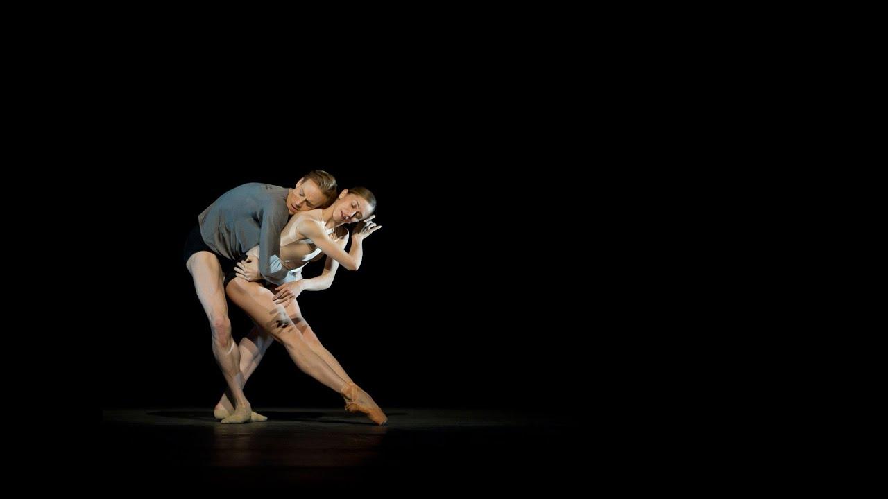 Infra Trailer Royal Ballet Youtube