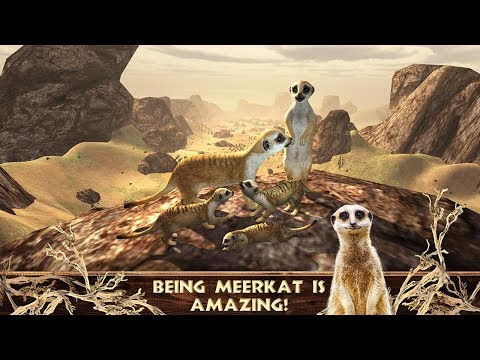 Meerkat Simulator - Wild African Life Game-y My Pocket Animals Studio-Android