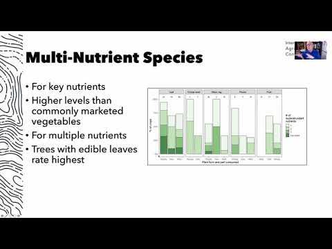 Lightning Talk - Perennial Vegetables