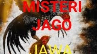 Download Video Raden singo mas terbaru 2018-2019  - Mist3ri Jago Jawa  #Jejakradenjoss MP3 3GP MP4
