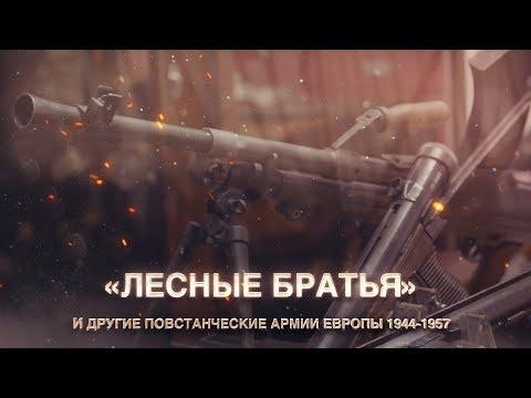 """""""Лесные братья""""  и другие повстанческие армии Европы 1944-1957 года"""