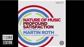 Nature Of Music - Profound Satisfaction (Martin Roth Remix)
