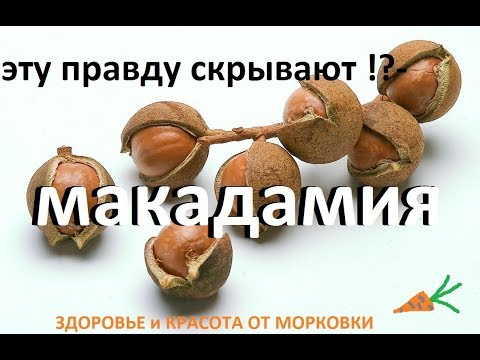 какую правду скрывают продавцы орехов макадамия !?