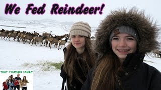 We Fed Reindeer
