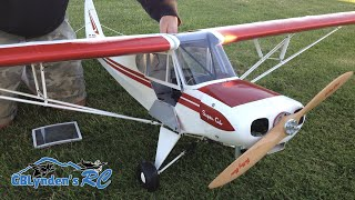 Hangar 9 Super Cub 1/4 Scale PA-18 RC Plane - Super Cub ARF with a VVRC 40 Twin Engine