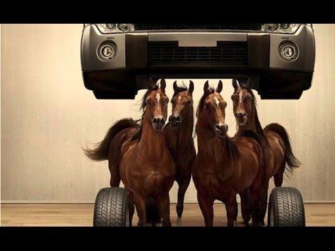 LA DIFERENCIA ENTRE CABALLOS DE FUERZA Y TORQUE | Motor Evolution