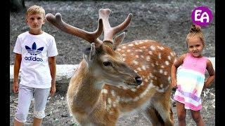 Единственный в России сельский зоопарк. Экскурсия по Большереченскому зоопарку Омская область