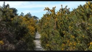 Vacances à Crozon - Finistère