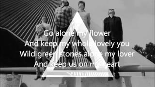 alt-j - tessellate - lyrics on screen