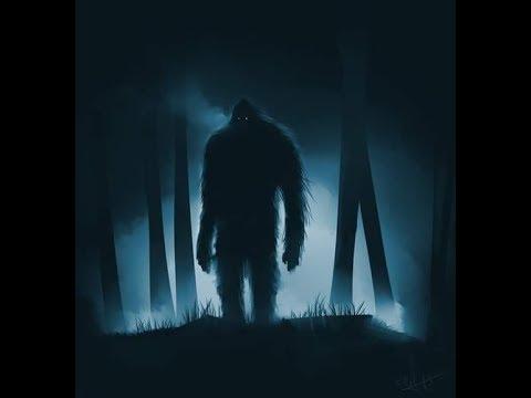 World Bigfoot Radio episode #16, part 1 ~ Genoskwa returns!