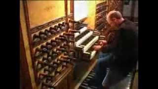 Willem van Twillert plays Bach, Schäfe können sicher weiden. [BWV208] Hinsz-organ, Kampen [NL]
