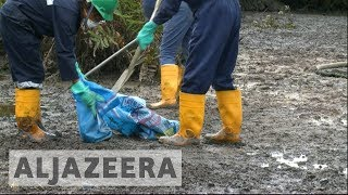 Nigeria oil spills: Shell begins clean-up after 10-year delay