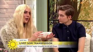 """Ava: """"Jag mådde väldigt dåligt och förnekade alla känslor"""" - Nyheterna (TV4)"""
