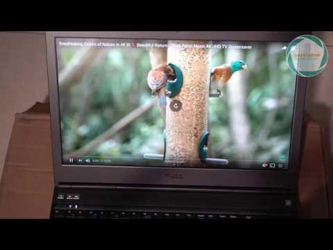 Dell M4800 option màn 4K siêu hiếm