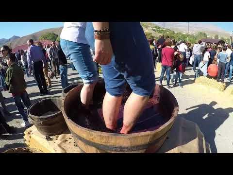 Having fun to Areni Wine Festival - 7th October 2017