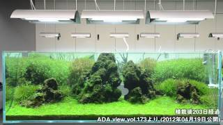 [ADA view 320] Follow-up video of NA Gallery aquariums. 180cm No.3(6)