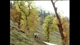 kadhal rojave - Roja - A.R.Rahman - Full Quality