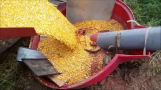 Corn harvest and Unloading corn into the Bin 2016