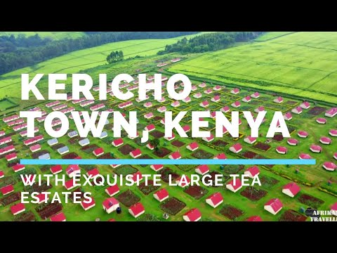 Kericho Town, Kenya. The Beautiful Town With Exquisite Large Tea Estates/Farms in Rift Valley.