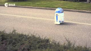 Friendly little robot