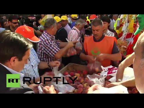 Spain: Free fruit! Russia's sanctions lead to huge ...