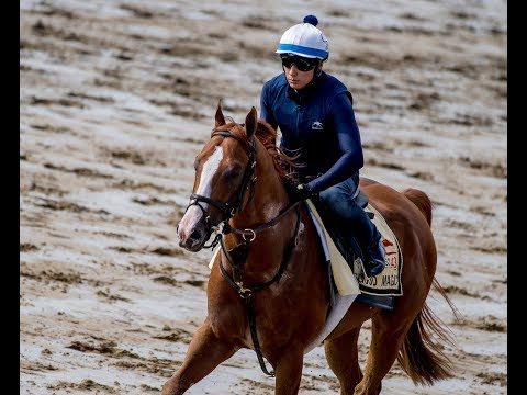 Preakness 2018 contender Good Magic takes to Pimlico
