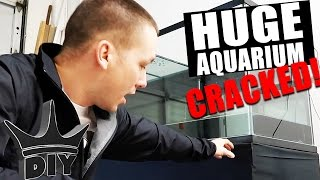 AQUARIUM DISASTER! Every fish keepers WORST NIGHTMARE!