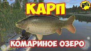 Русская Рыбалка 4 КАРП и трофейный КАРАСЬ комариное озеро