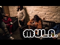 Two Zero One Seven Vlog Day 1 With Chief Keef Ballout Tadoe video