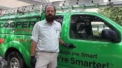 Pest Control and Exterminator Pennington NJ. Cooper Pest Solutions is keeping Pennington Pest Free