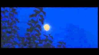 Super-mesec i kiša meteora | 11.08.2014