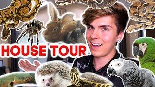 house-tour-where-do-i-keep-over-50-pets