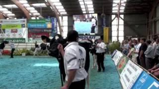 Terralies 2009 : Les concours bovins