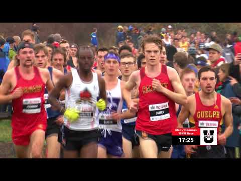 2017-u-sports-xc-mens-race-highlights