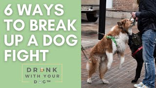 6 Ways to Break Up a Dogfight SAFELY