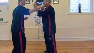 Joint Locking and Push Hands