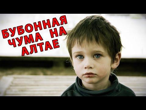 Чума: Хроника эпидемии — КиноПоиск