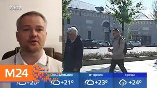 Смотреть видео Синоптики советуют москвичам использовать воскресенье для прогулок - Москва 24 онлайн