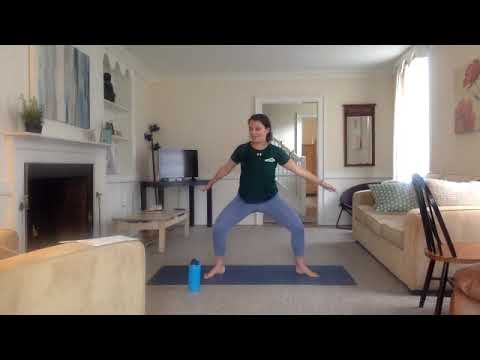 Barre with Shaina - 50 Minutes