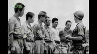 Дневники второй мировой войны день за днем. Январь 1943 / Січень 1943