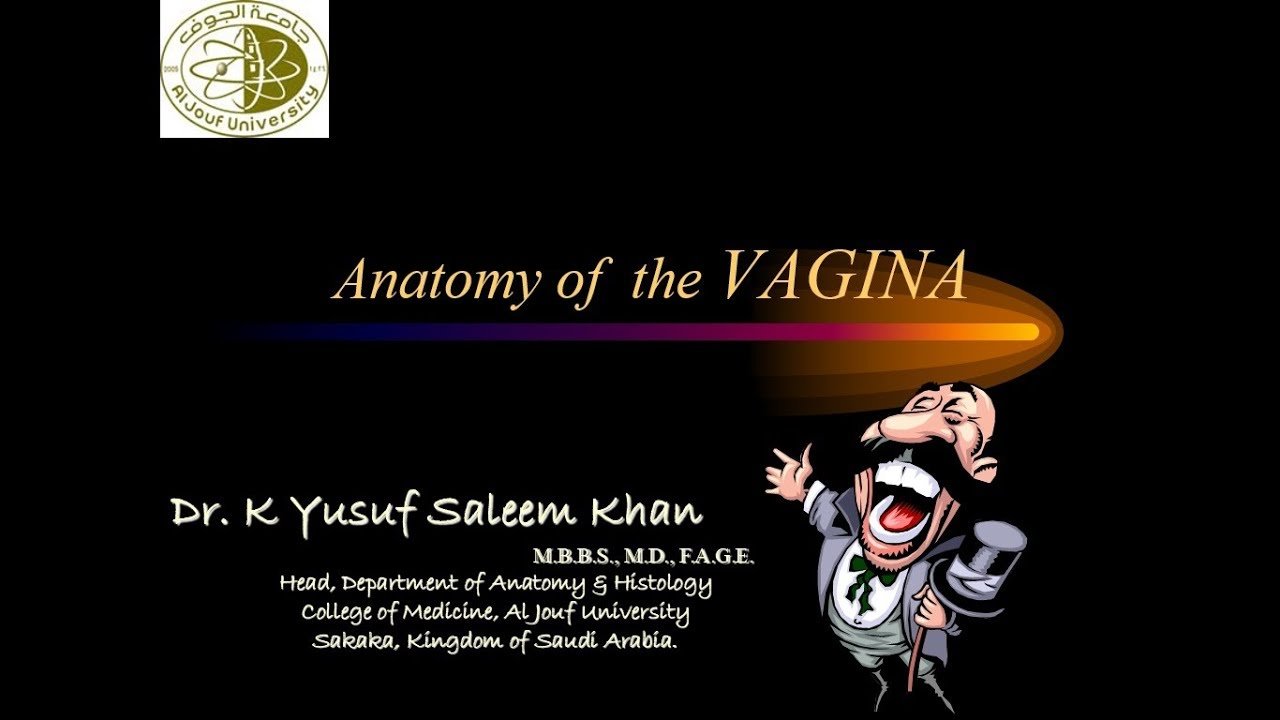 Lecture On Anatomy Of The Vagina  By Dr Yusuf -5669