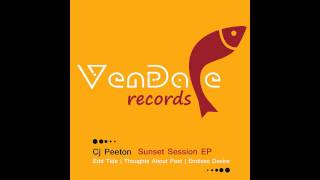 Cj Peeton - Endless Desire (Original Mix) [Vendace Records]