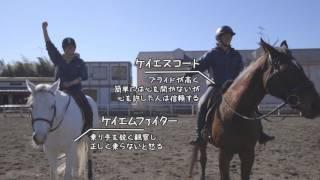 馬の学校アニマル・ベジテイション・カレッジの紹介です.