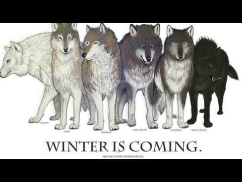 DIREWOLVES And What They Are To Game Of Thrones! LORE
